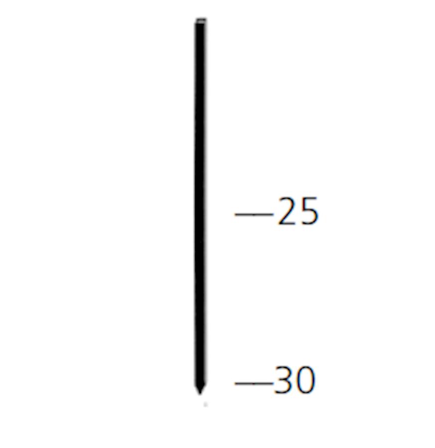 stifte (pins) pga-25mm